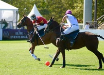 Baku hosts Arena Polo World Cup competitions