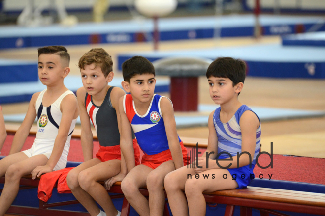 Artistic and acrobatic gymnastics championships kick off in Azerbaijan. Azerbaijan, Baku, november 17, 2017
