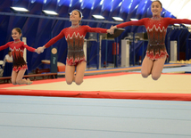 Artistic and acrobatic gymnastics championships kick off in Azerbaijan